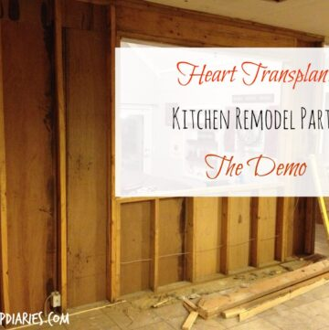 Ripping Out the Heart of the Home--Kitchen Demo