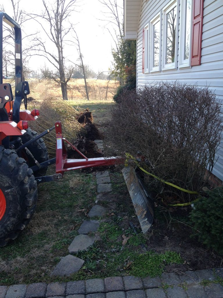 Removing old bushes to improve curb appeal and update landscaping