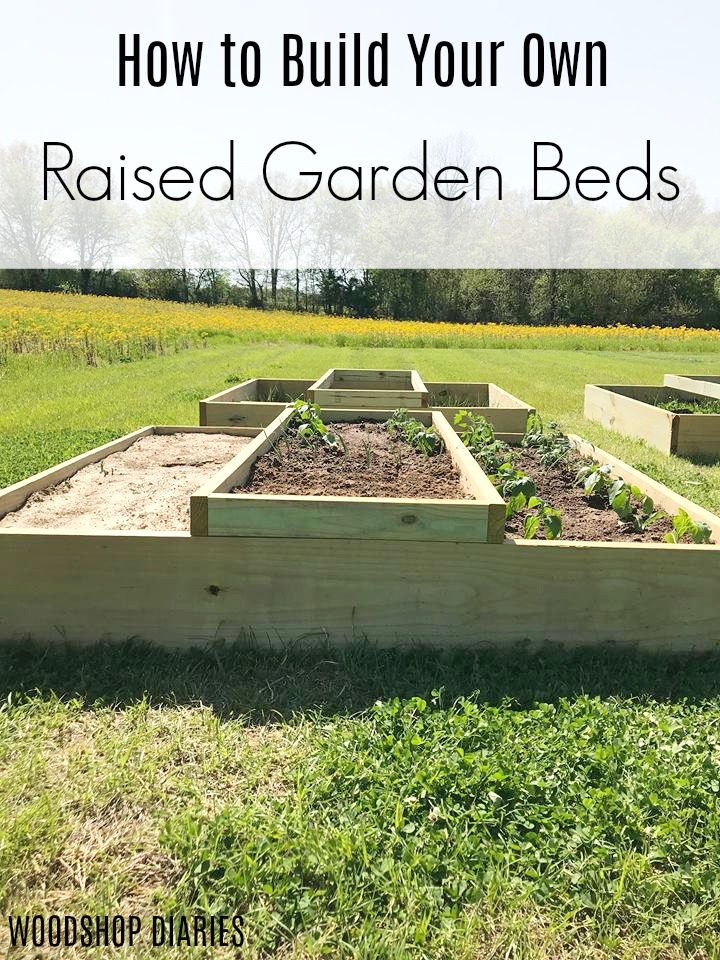 Learn how to build your own raised garden beds with this easy to follow tutorial