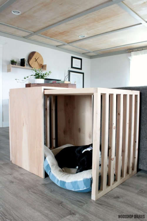 Lucy asleep in slatted sides and top dog crate furniture piece with sliding door--mid century modern style dog crate