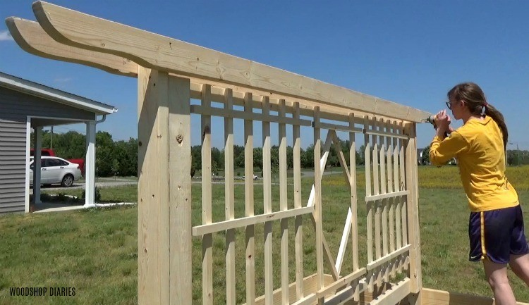 """Screw pergola shaped 2x4 boards into the top of the garden bed trellis frame with 2 ½"""" wood screws"""