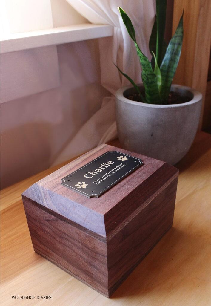 Walnut DIY pet urn keepsake box sitting on nightstand next to house plant