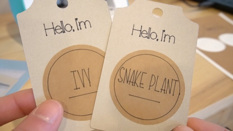 Close up of cardstock tags with name stickers applied