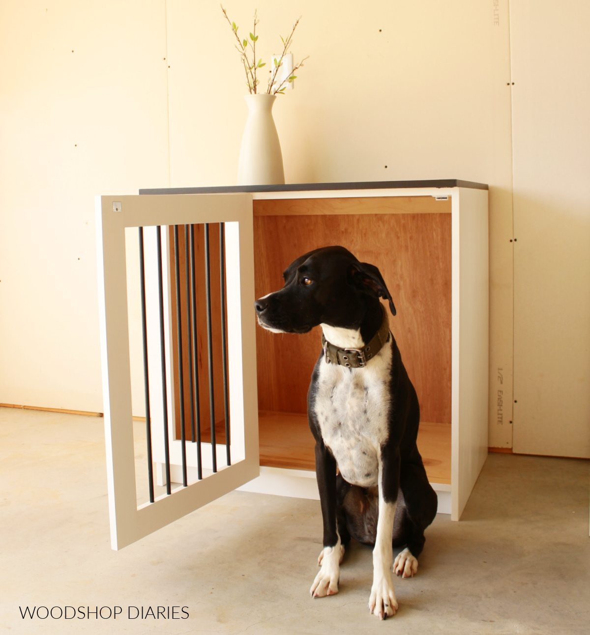 Black and white dog in front of black and white wooden dog crate with door open